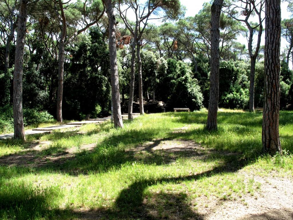 Parque Collserola